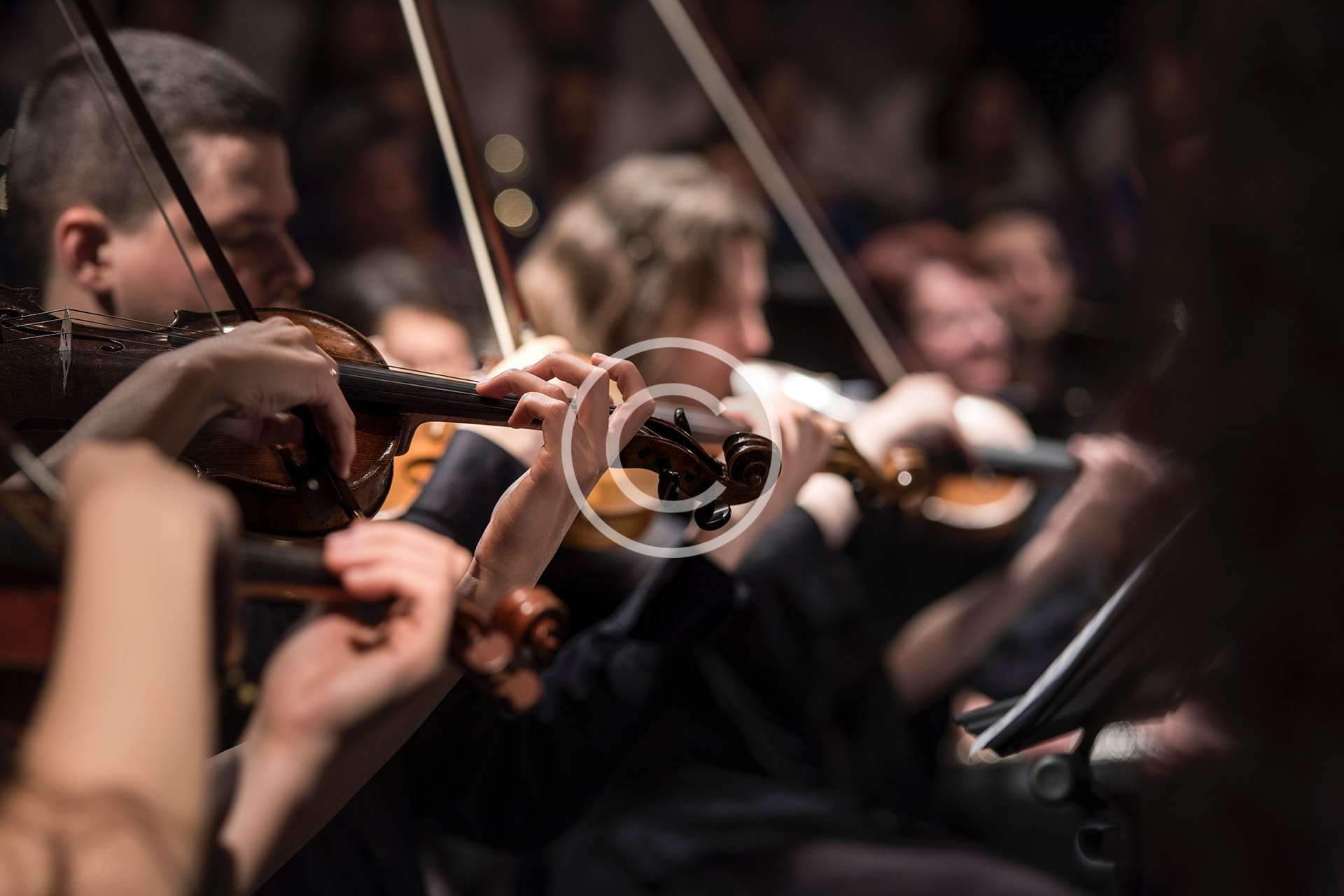 Violí i Violoncel